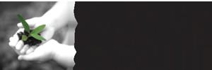 Castlecrag logo